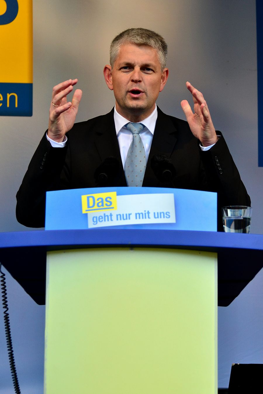 Christoph Dammermann (FDP)